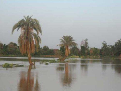 Niamey menacée d'inondation selon l'Autorité du bassin du fleuve Niger