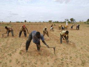 le-gouvernement-veut-atteindre-une-production-agricole-de-6-500-000-tonnes-de-cereales-cette-annee