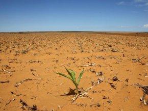 secheresse-recurrente-et-changement-climatique-au-menu-du-conseil-des-ministres-de-la-commission-bassin-du-lac-tchad-ce-jeudi