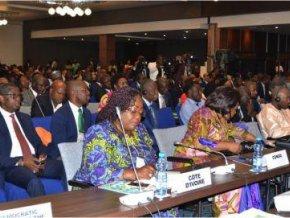 la-16e-conference-ministerielle-africaine-sur-l-environnement-a-adopte-la-declaration-de-libreville