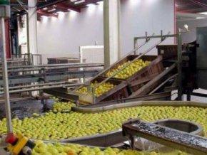 l-etat-promeut-la-consommation-des-produits-industriels-locaux